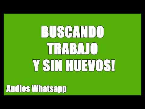 Audios Whatsapp: Buscando Trabajo en Municipalidad y Sin Huevos!!!