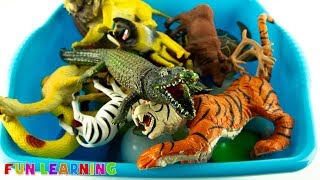 Learn Wild Animals Names with Animal Toys For Children