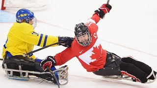Key Facts About Para Ice Hockey