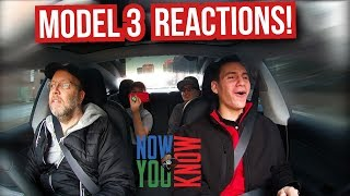 People React to the Model 3