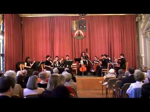 Joseph Haydn - Divertimento (Cassation) for Strings in G-Major, Hob. II:2