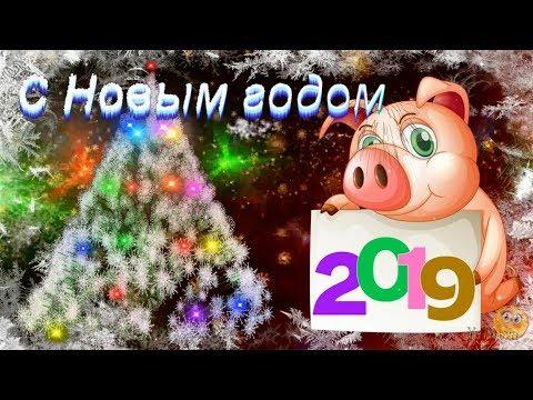 Весёлое музыкальное поздравление с Новым 2019 Годом - годом СВИНЬИ - Видео на ютубе