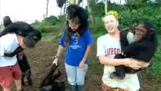John Lydon Goes Ape - Ngamba Chimp Sanctuary