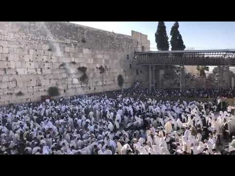 Thousands pray at Western Wall, Jerusalem