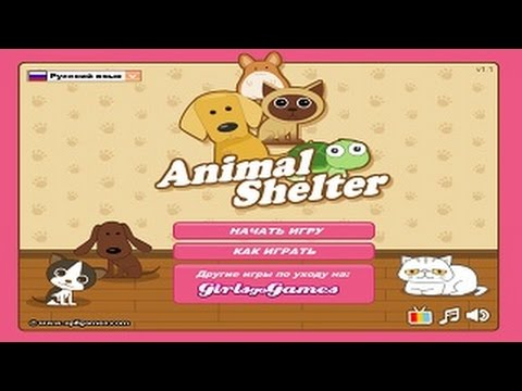 Игры про животных - лечение и уход за ними