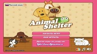 Приют животных игра