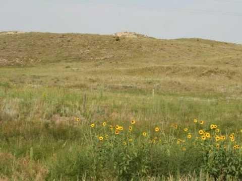 Nebraska Territory Commercial Project
