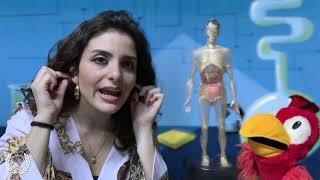 Baixar Silus et Maria ep.7 - De corpore humano (Latin4Kids)