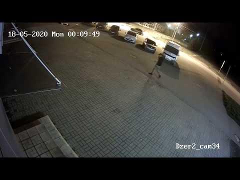 Нападение медведя в Ярославле 18.05.20
