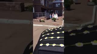 Аренда авто с водителем, свадьба, трансфер. Съемки