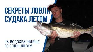 Секреты ловли судака летом на водохранилище на спиннинг