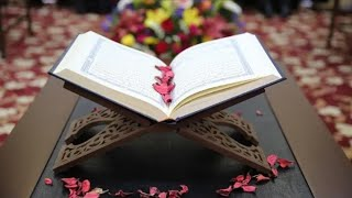 عشر ساعات من تلاوة القرآن الكريم تخشع له القلوب