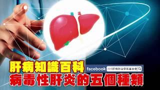 【肝病知識百科】基本知識4-1:病毒性肝炎的五個種類