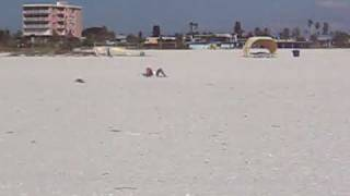 Man Exposed at Treasure Island Beach Florida