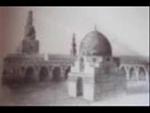 Sepohon Kayu - NadaMurni
