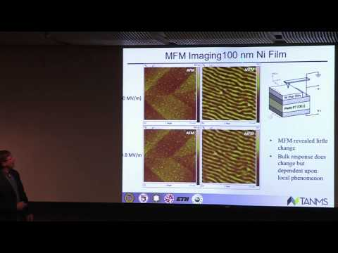 Future Nanoscale Multiferroic Devices