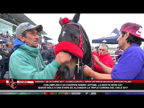 Nota Wow Cat (clásico Gran Criterium Mauricio Serrano Palma Grupo I) Futuros Campeones 2017