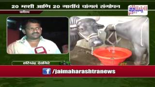 Sheti Mitra, Dairy farming to grow in Maharashtra