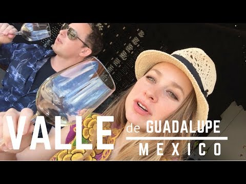TRIP TO VALLE DE GUADALUPE - MEXICO'S WINE REGION - Travel Vlog