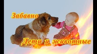 Дети и животные Смешное забавное видео Позитив Создай себе хорошее настроение