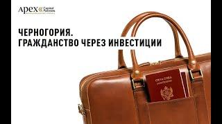 Гражданство Черногории за инвестиции в недвижимость на Севере страны Отель Breza 5