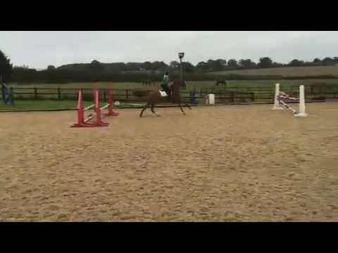 *** FOR SALE *** Ruby Tuesday X *JUMPING*