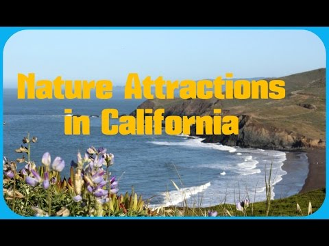 TOP 13. Beautiful Nature Attractions in California, United States