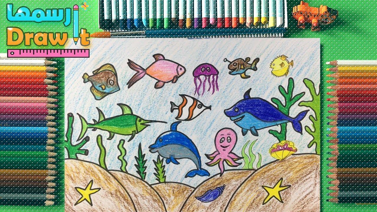 كيف ترسم قاع البحر رسم اسماك ملونة اشكال اسماك مختلفة اسماك بطريقة سهلة Youtube