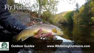 White Dog Trail Company - Outdoor Guides Trailer
