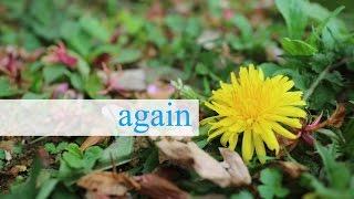 【だんでらいおん】again【again踊ってみたコンテスト】
