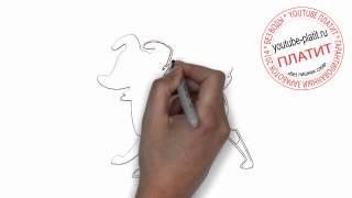 Нарисованные карандашом собаки  Как нарисовать лайку