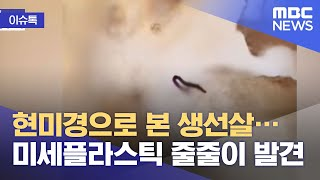 [이슈톡] 현미경으로 본 생선살…미세플라스틱 줄줄이 발…