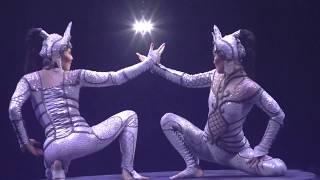 видео Все шоу цирка дю солей