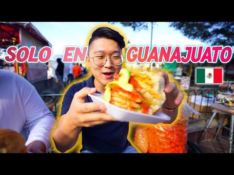 PROBANDO LAS GUACAMAYAS DE GUANAJUATO