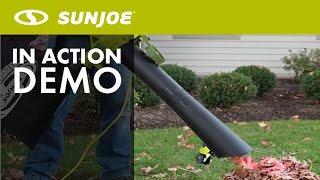 SBJ605E - Sun Joe 14-Amp Electric Blower/Vacuum/Mulcher - Live Demo