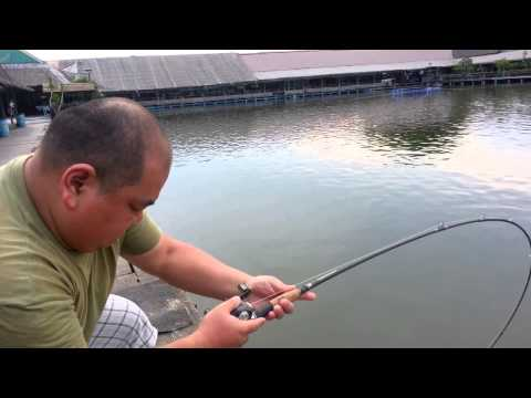 Abu Revo SX Reel !!!  Abu Conolon Rod  !!! Mekong Catfish !!! Fishing Thailand By BKKGUY