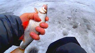 Стоила эта рыбалка такой дороги Застряли в пойме Зимняя рыбалка 2020 2021 Безмотылка