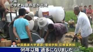 中国 化学肥料依存症が出現