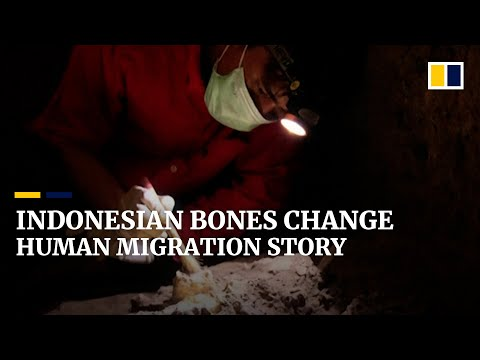 7,000-year-old remains of young Indonesian woman reshape views on early human migration