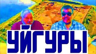 Уйгуры -  высокие телеги / история азии