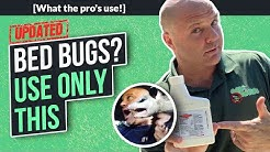 How Exterminators Kill 100% Of Bed Bugs For Under $47 [DIY]
