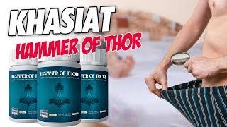 WA 082313111123 - Hammer Of Thor Eceran Ini Dia Harganya Dan Cek Dulu Manfaatnya Disini