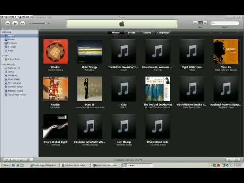 How To: get free songs on ipod