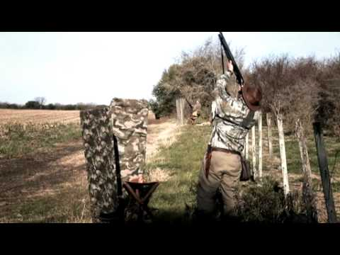 Uruguay Dove Hunting