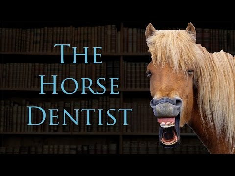 The Horse Dentist: Strangest Cases in Law