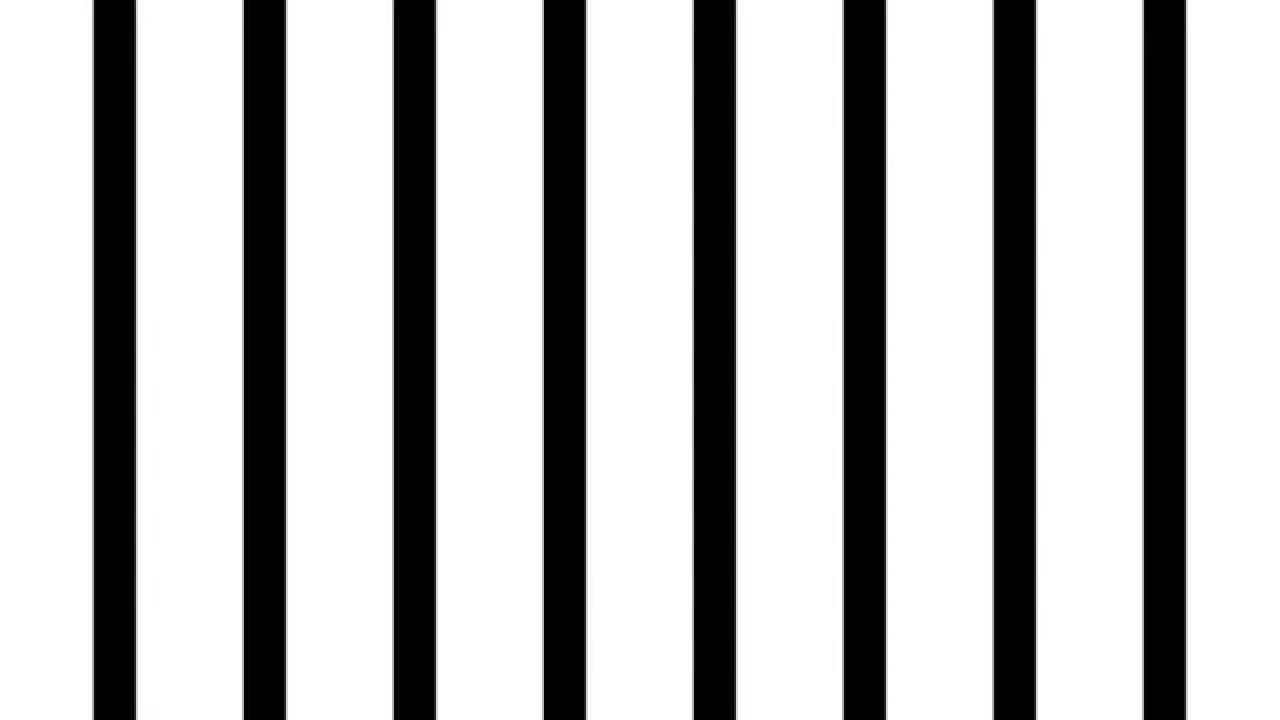 Striped】肥大化していく縦線【p...
