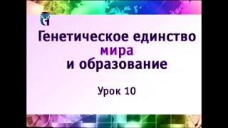 Наука и образование. Урок 10. Мать и дитя - методология и метод