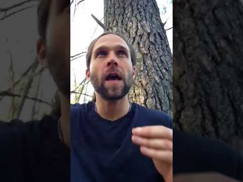 Jeremiah REVIEWS DIGIBYTE (DGB)