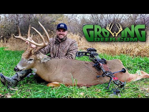 How To Tag A Big Buck On 9 Acres: Kansas Deer Hunting