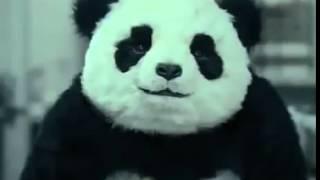 МЕГА СМЕШНАЯ РЕКЛАМА   Панда Panda + кредит и работа